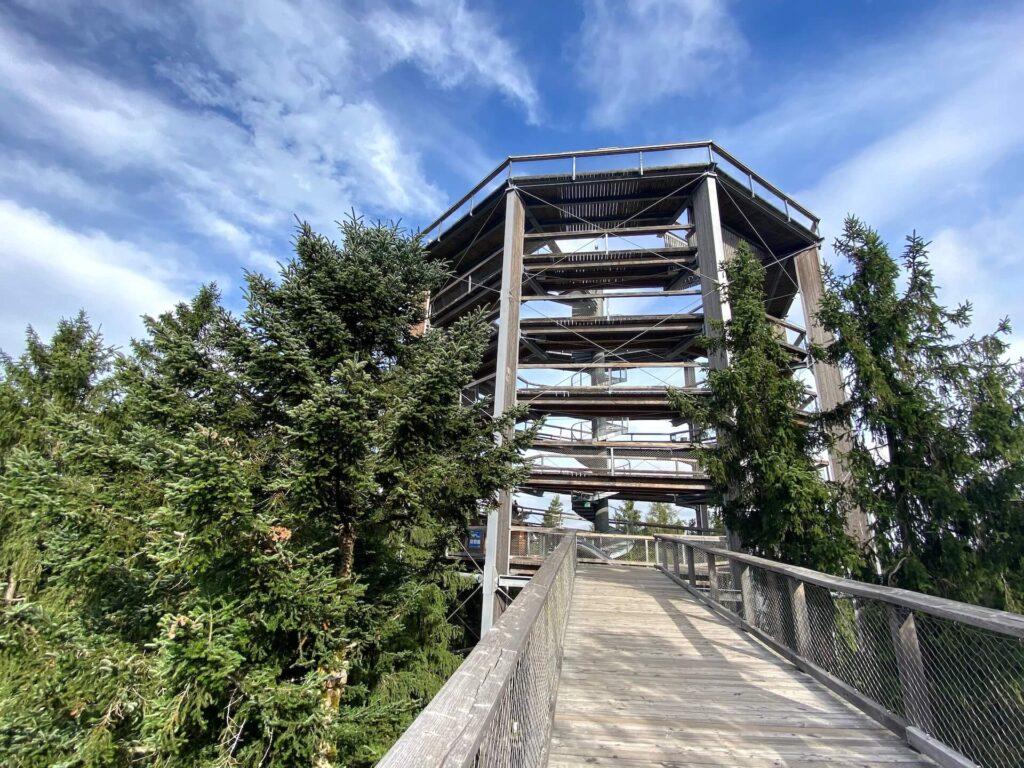 Treetop Walkway Lipno