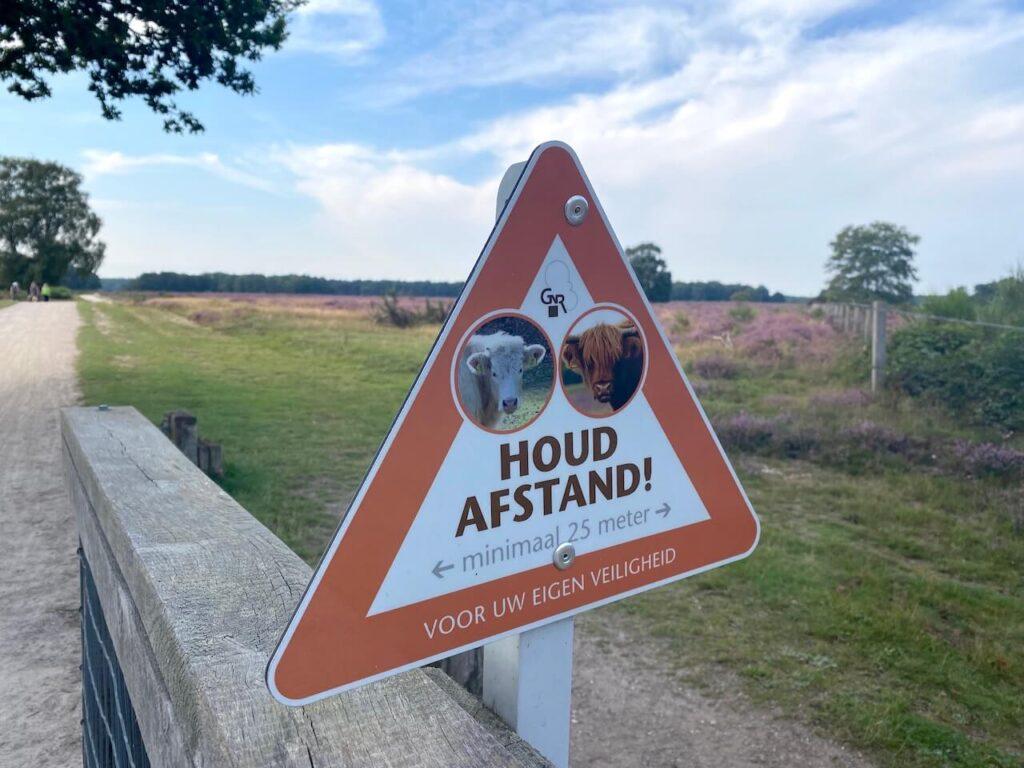 Westerheide Hilversum grote grazers
